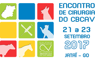 Encontro do CBCAV 2017